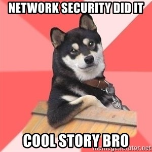 Cool Dog - Network Security Did It cool story bro