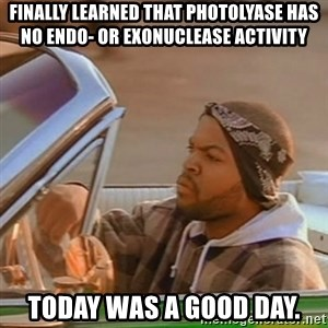 Good Day Ice Cube - Finally learned that photolyase has no endo- or exonuclease activity Today was a good day.