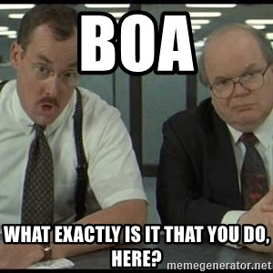 Office space - BOA What exactly is it that you do, here?