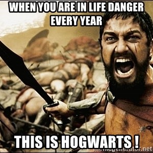 This Is Sparta Meme - WHen you are in life danger every year This is HOGWARTS !
