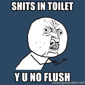 Y U No - Shits in toilet Y u no Flush