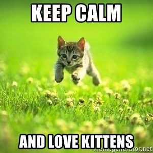 God Kills A Kitten - KEEP CALM AND LOVE KITTENS