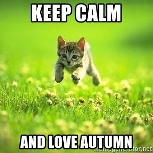 God Kills A Kitten - KEEP CALM AND LOVE AUTUMN