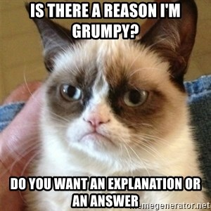Grumpy Cat  - is there a reason i'm grumpy? do you want an explanation or an answer