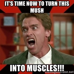 Arnold Schwarzenegger 1 - It's time now to turn this mush into muscles!!!