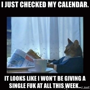 i should buy a boat cat - I just checked my calendar. It looks like I won't be giving a single fuk at all this week..