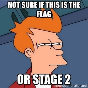 Futurama Fry - NOT SURE IF THIS IS THE FLAG OR STAGE 2