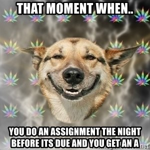Stoner Dog - That moment when.. you do an assignment the night before its due and you get an A