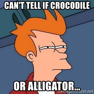 Futurama Fry - Can't tell if crocodile or alligator...