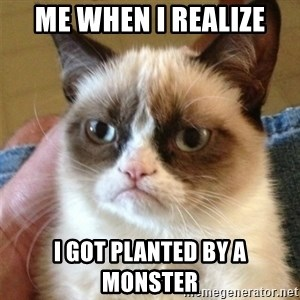 Grumpy Cat  - Me when I realize I got planted by a monster