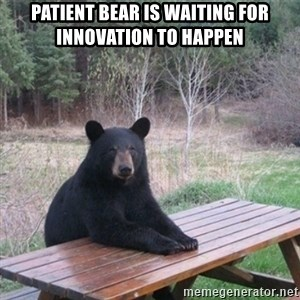Patient Bear - Patient bear is waiting for innovation to happen