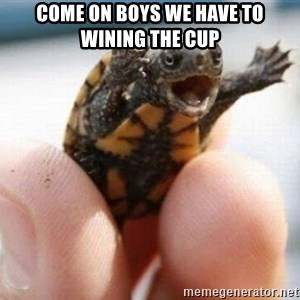 angry turtle - Come on boys we have to wining the cup