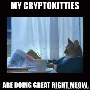 i should buy a boat cat - MY cryptokitties are doing great right meow