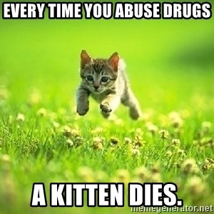 God Kills A Kitten - Every time you abuse drugs A kitten dies.