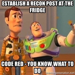 Consequences Toy Story - ESTABLISH A RECON POST AT THE FRIDGE CODE RED - YOU KNOW WHAT TO DO