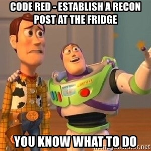 Consequences Toy Story - CODE RED - ESTABLISH A RECON POST AT THE FRIDGE YOU KNOW WHAT TO DO