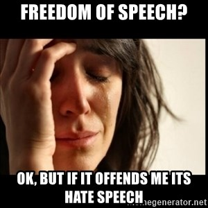 First World Problems - Freedom of Speech? ok, but If it offends me its hate speech