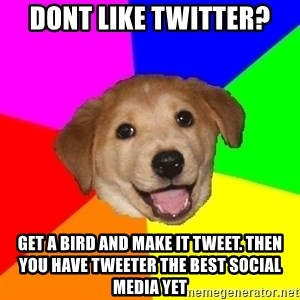 Advice Dog - Dont like twitter? Get a bird and make it tweet. Then you have tweeter the best social media yet