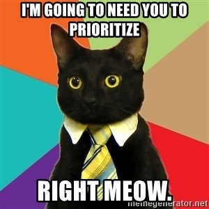 Business Cat - I'm going to need you to prioritize right meow.