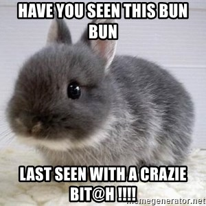 ADHD Bunny - HAVE YOU SEEN THIS BUN BUN LAST SEEN WITH A CRAZIE BIT@H !!!!