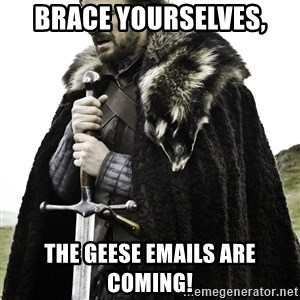 Brace Yourself Meme - Brace yourselves, The geese emails are coming!