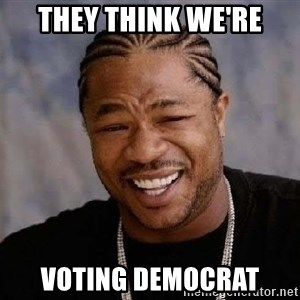 Yo Dawg - they think we're voting democrat