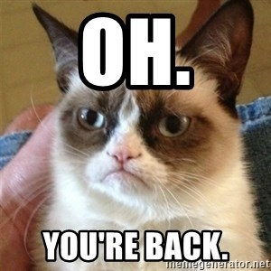 Grumpy Cat  - Oh. You're back.