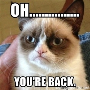 Grumpy Cat  - Oh................ You're back.