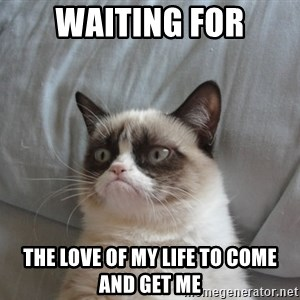 Grumpy cat 5 - Waiting for the love of my life to come and get me