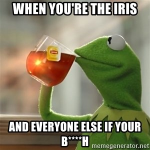 Kermit The Frog Drinking Tea - When you're the iris and everyone else if your b****h
