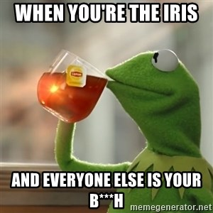 Kermit The Frog Drinking Tea - When you're the iris  and everyone else is your b***h