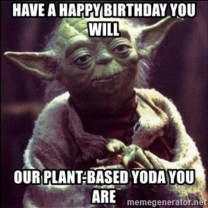 Advice Yoda - have a happy birthday you will our plant-based yoda you are