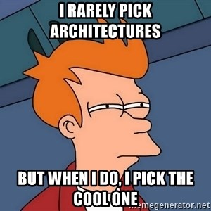 Futurama Fry - I rarely pick architectures but when I do, I pick the cool one