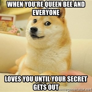 so doge - when you're queen bee and everyone loves you until your secret gets out