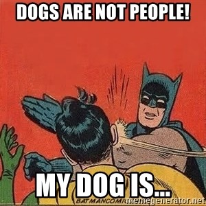 batman slap robin - Dogs are not PEOPLE! My dog is...