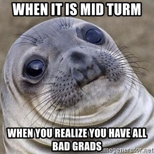Awkward Seal - When It is Mid turm  when you realize you have all bad grads