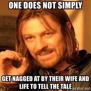 One Does Not Simply - ONE DOES NOT SIMPLY GET NAGGED AT BY THEIR WIFE AND LIFE TO TELL THE TALE