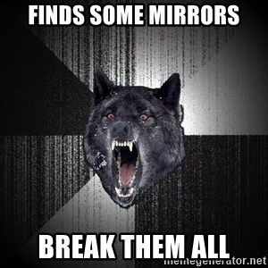 Insanity Wolf - finds some mirrors break them all