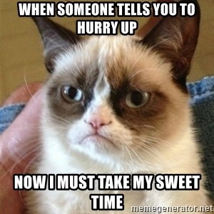 Grumpy Cat  - When someone tells you to hurry up Now I must take my sweet time