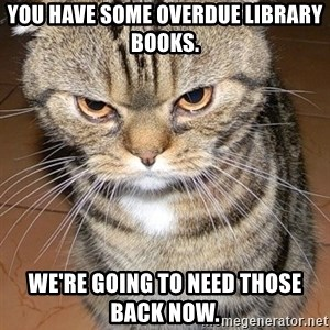 angry cat 2 - you have some overdue library books. we're going to need those back now.