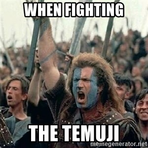 Brave Heart Freedom - when fighting the temuji