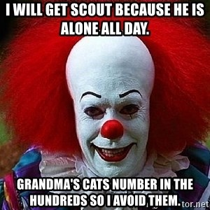 Pennywise the Clown - I will get Scout because he is alone all day. Grandma's cats number in the hundreds so I avoid them.