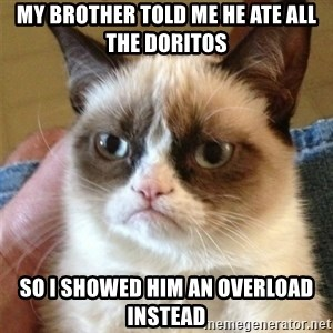 Grumpy Cat  - My brother told me he ate all the doritos so i showed him an overload instead