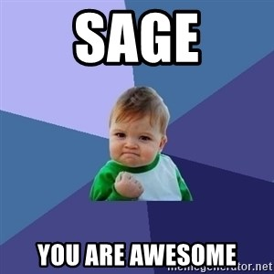 Success Kid - sage you are awesome