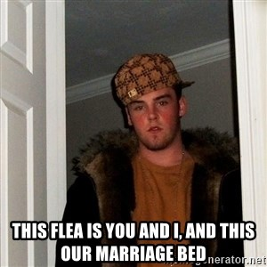Scumbag Steve - This flea is you and I, and this Our marriage bed