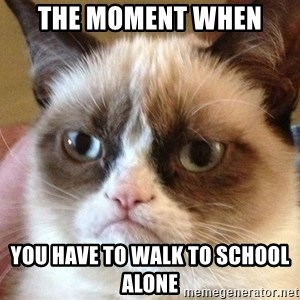 Angry Cat Meme - the moment when  you have to walk to school alone