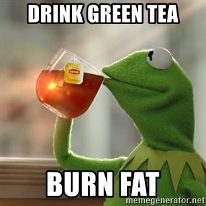 Kermit The Frog Drinking Tea - drink green tea burn fat