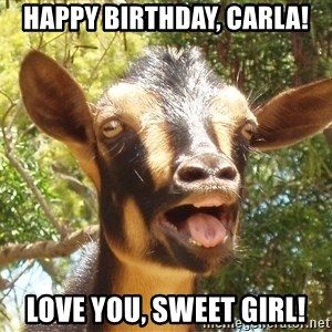 Illogical Goat - Happy Birthday, Carla! Love you, Sweet Girl!