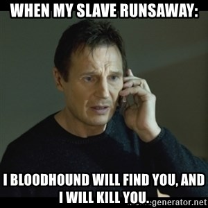 I will Find You Meme - When my slave runsaway:  I bloodhound will find you, and I will kill you.