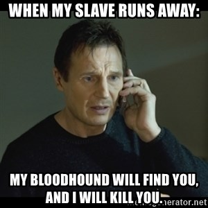 I will Find You Meme - When my slave runs away: My bloodhound will find you, and I will kill you.